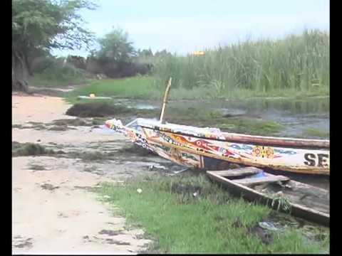 Le village de Ndialakhare se retrouve avec un marigot polué